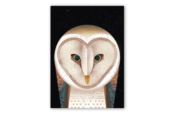 dieter-braun-barn-owl