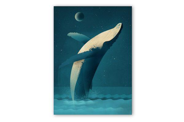 dieter-braun-humpback-whale