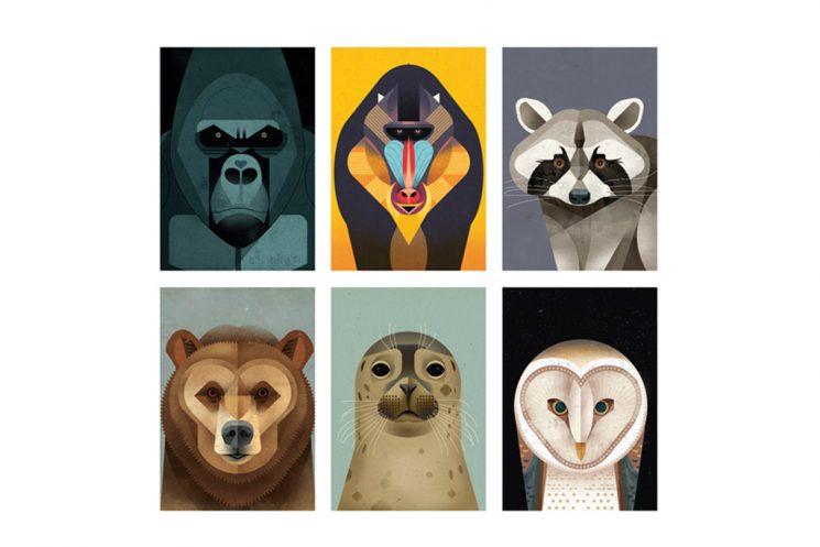 dieter-braun-postkarten-set-wildlife-faces