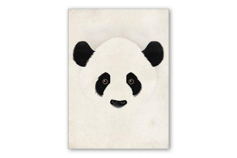dieter-braun-giant-panda