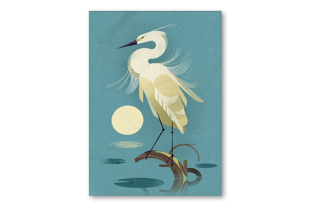 produktbilder-dieter-braun-little-egret