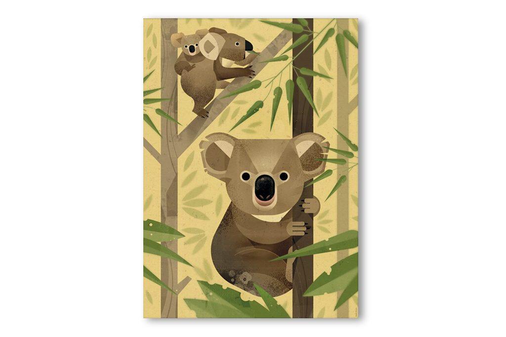 produktbilder-dieter-braun_koalas
