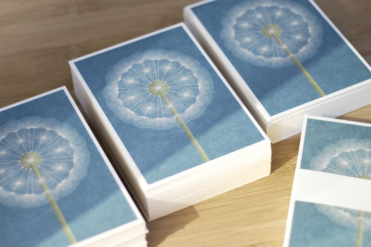 pusteblume postkarte